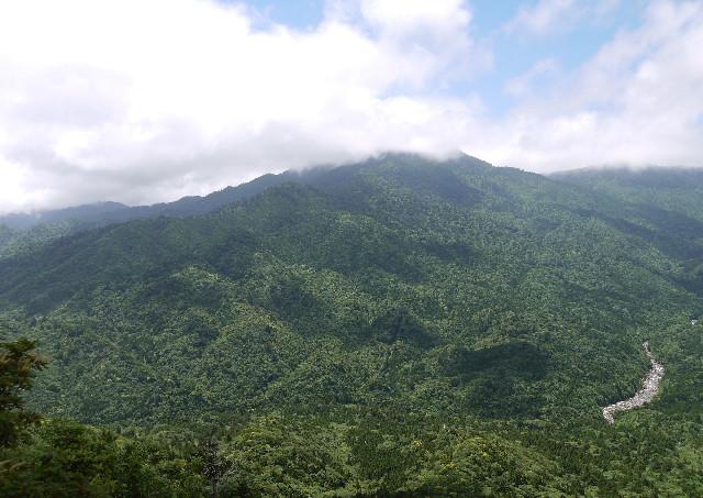 屋久島・縄文杉の日帰りツアーでは白谷雲水峡、太鼓岩の美しい景観を楽しめます