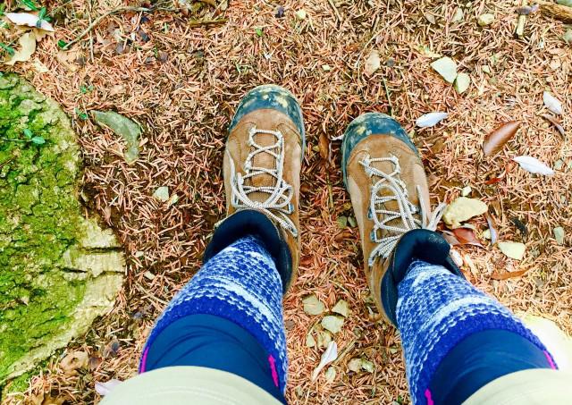 山道を歩く際は、登りは歩幅を小さく、下りは滑らないようにすることを意識しましょう。日帰りで屋久島を楽しみたい方はGUIDE OFFICE 屋久島へ。